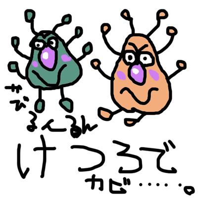 かびるんるん トオルカイロブログ京都の二条駅前整体院のブログ